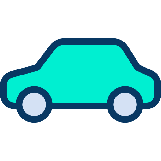 Customs clearance of the importer's car